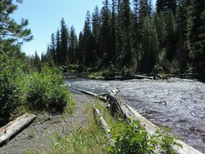 Tumalo Creek Restoration